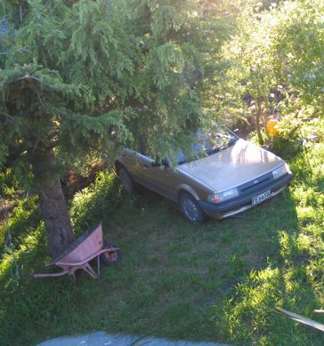 View of car from the deck stuck in tree half way down the hill